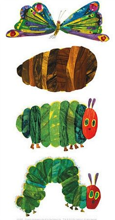64 Best Very Hungry Caterpillar images.