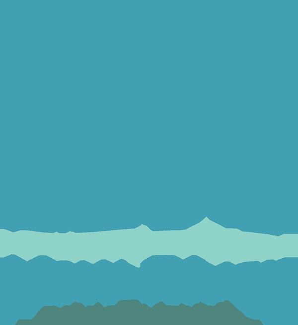 New River Animal Hospital.