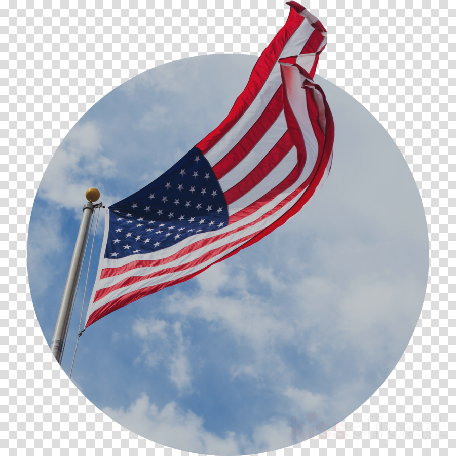 Veterans Day National Flag clipart.