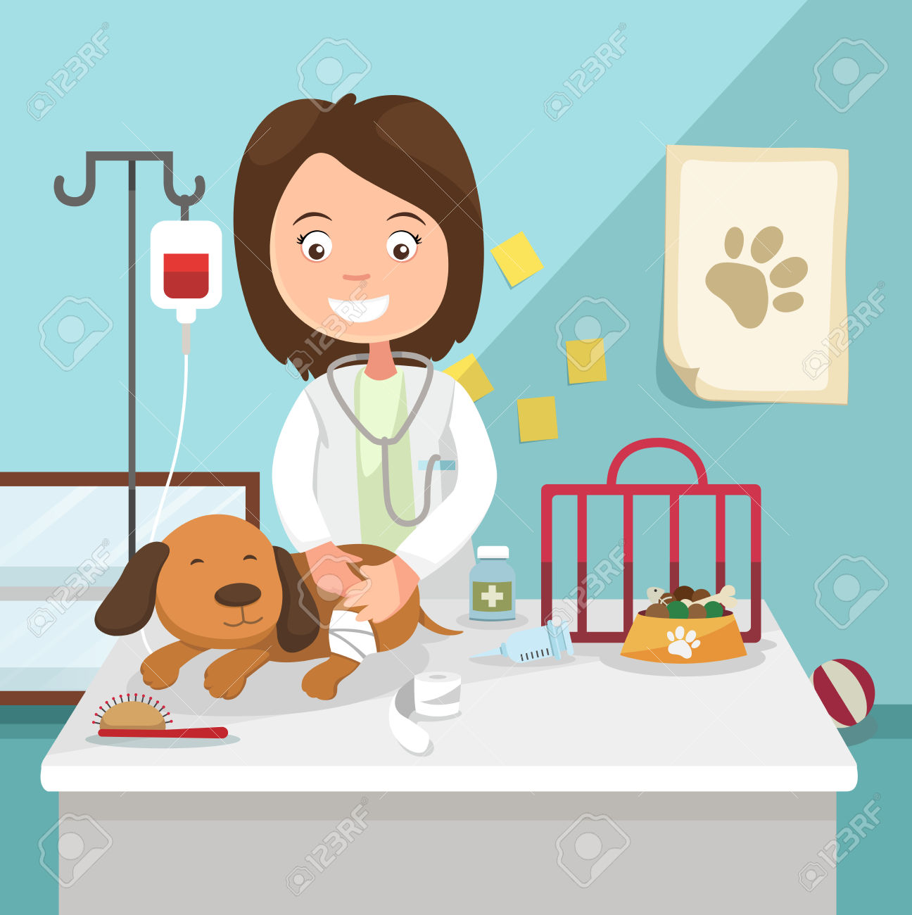 vet clipart free   clipground