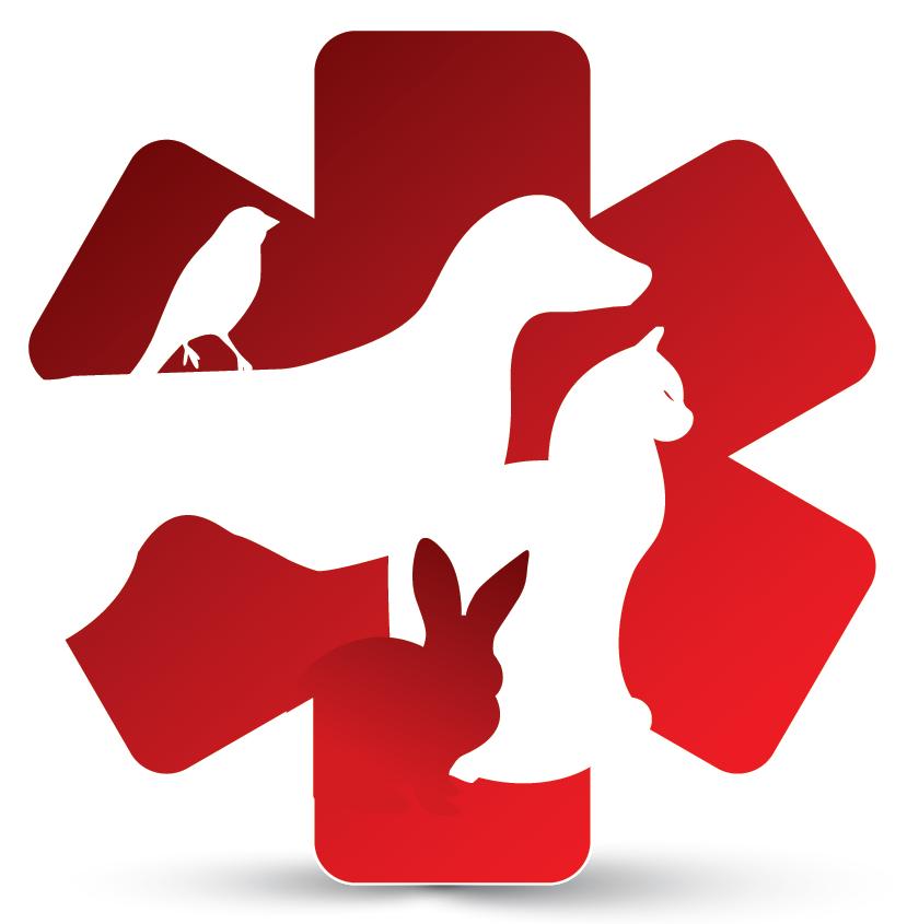 Veterinarian Logo Design.