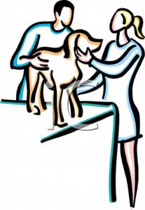 Picture: Two Veterinarians with a Dog on an Examination Table.