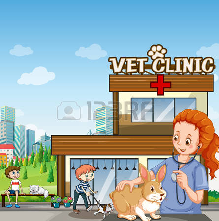 3,602 Drawing Veterinarian Stock Vector Illustration And Royalty.