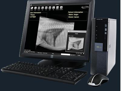 Digital Radiology (X.