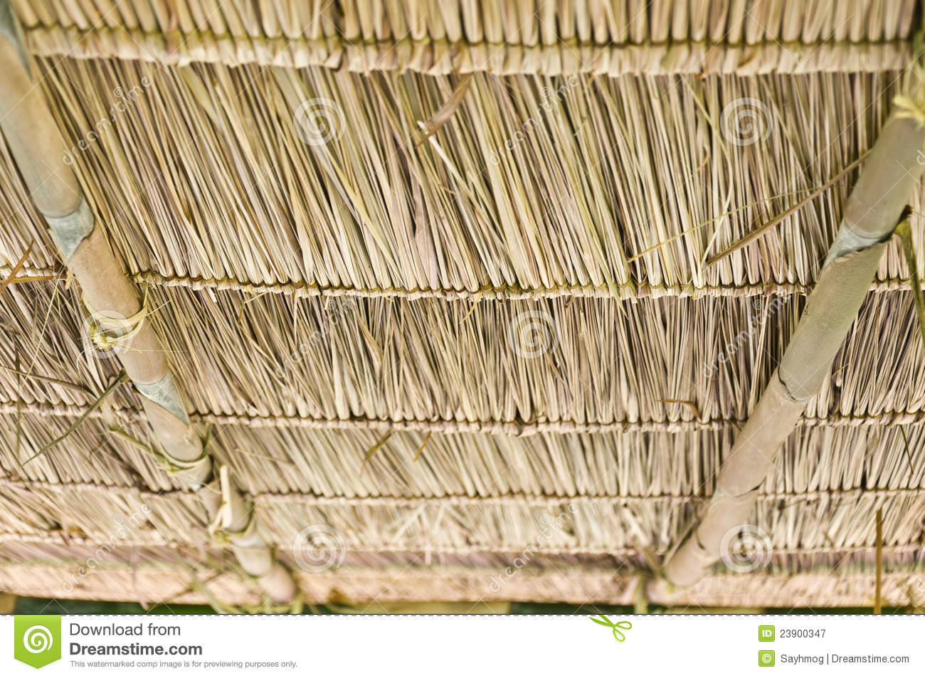 Vetiver Stock Photos, Images, & Pictures.