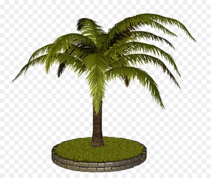 Coconut Arecaceae Tree Clip art.