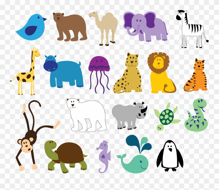 Colorful Animals 815 X 315 Vfx Solidarity Visual Effects.