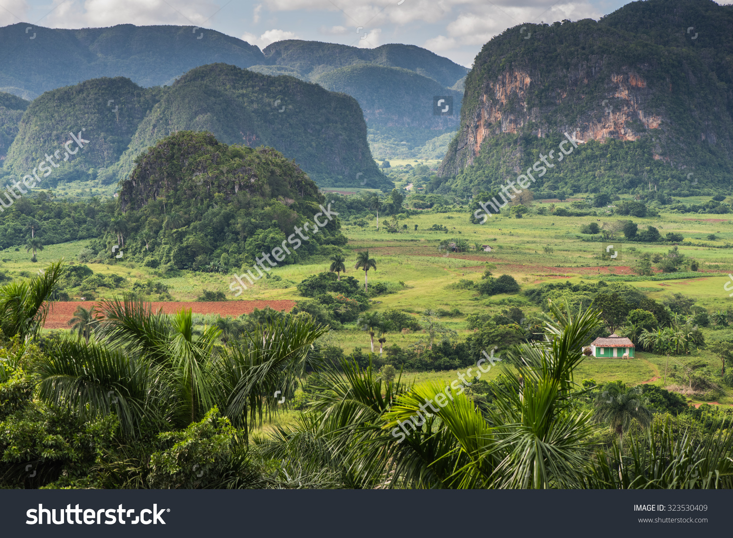 Panoramic View Over Landscape Mogotes Vinales Stock Photo.