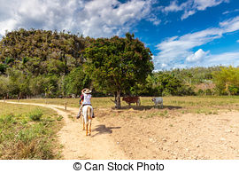 Stock Photo of The beautiful Vinales Valley in Cuba. The Vinales.