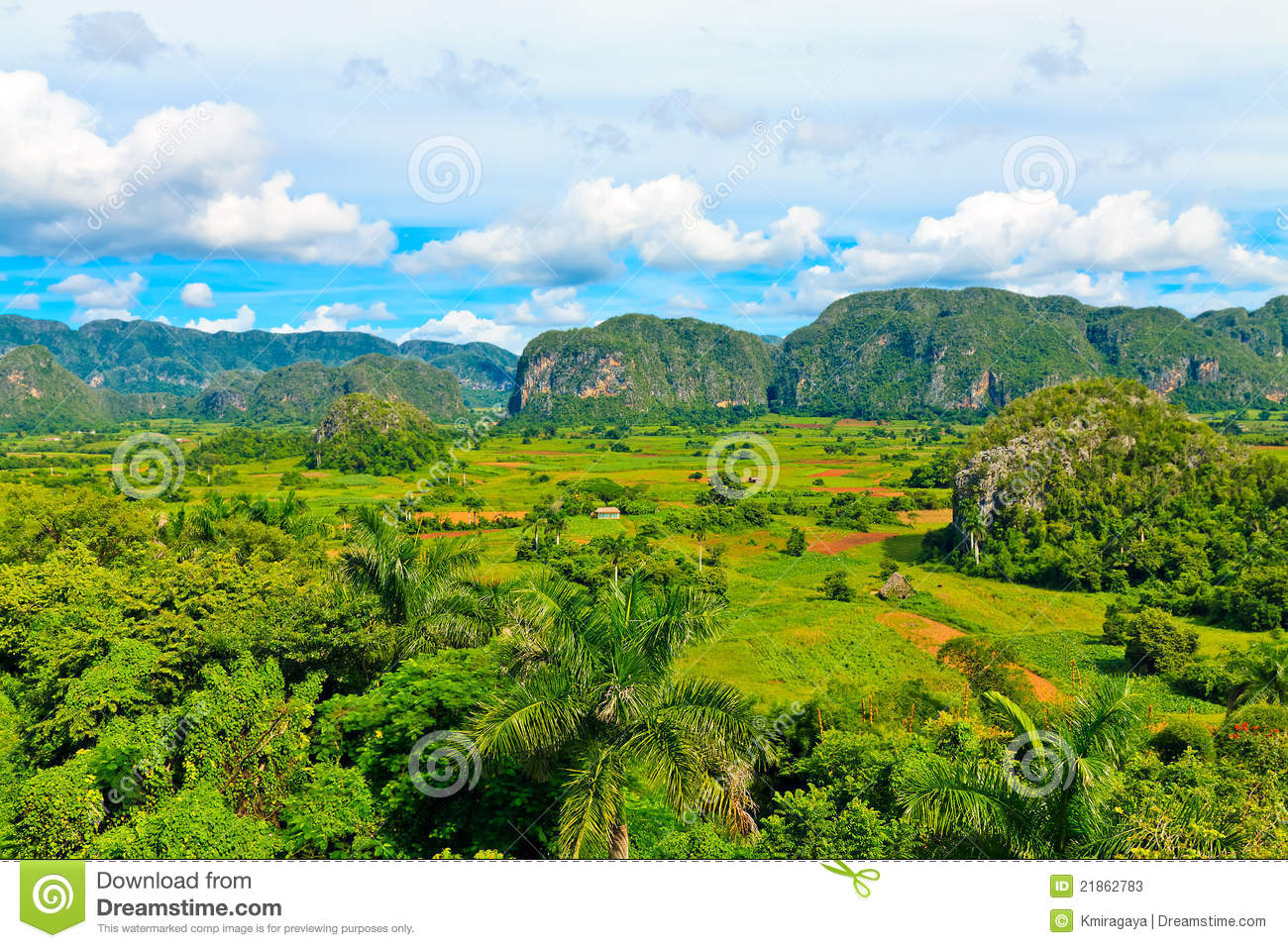 The Vinales Valley In Cuba Stock Photos.
