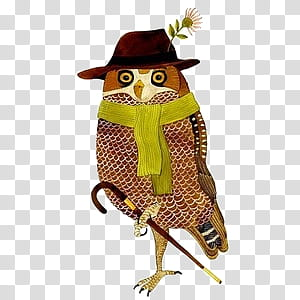 Various VI, brown owl transparent background PNG clipart.