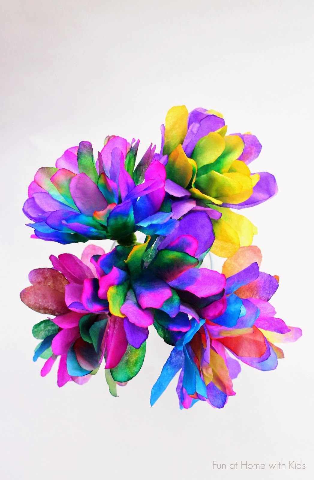 Vibrant Flower Pictures.