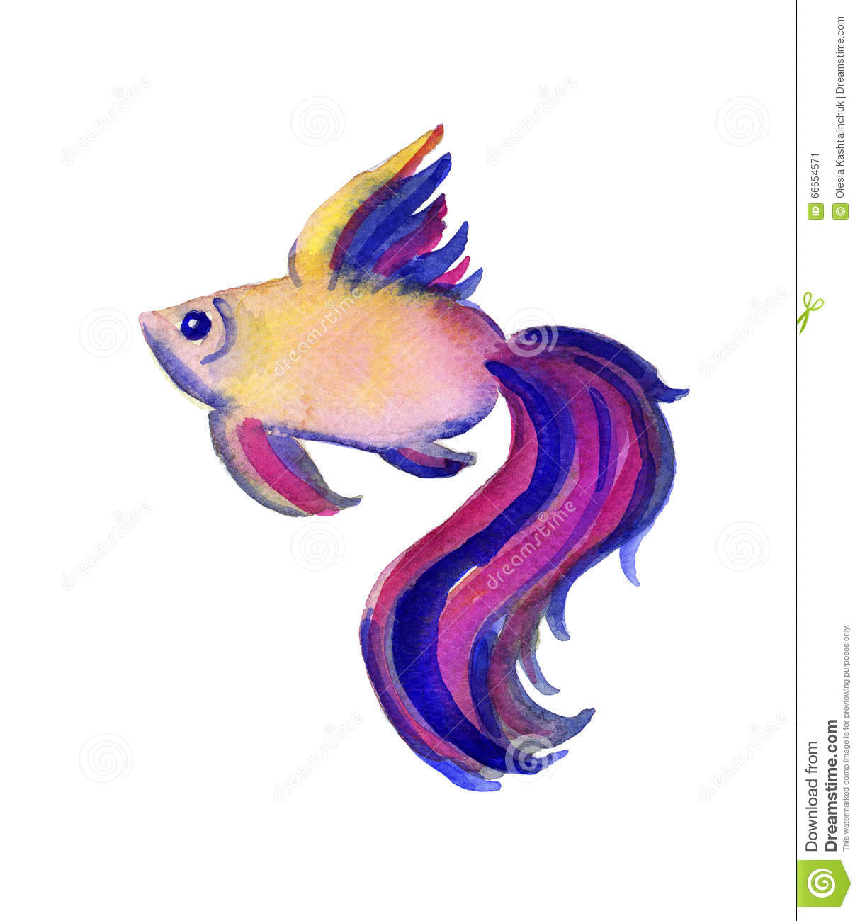 Beautiful Watercolor Vibrant Picture Of A Fish Stock Illustration.