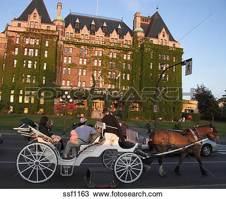 Stock Photo of Sunlight Horse and Carriage in front of Empress.
