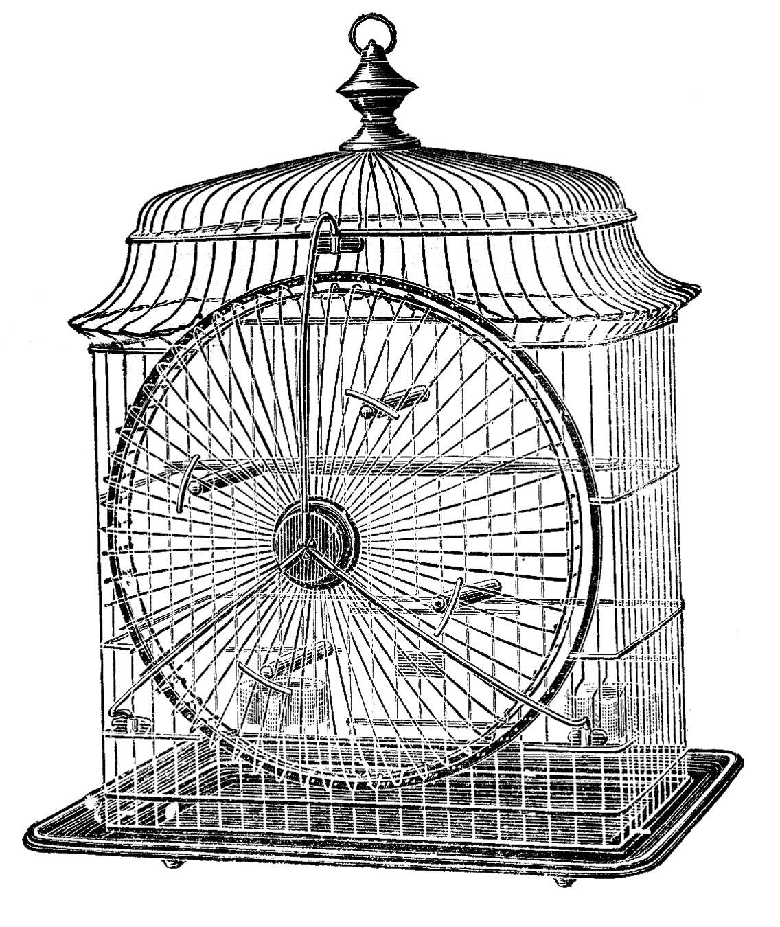 9 Vintage Bird Cage Clip Art!.