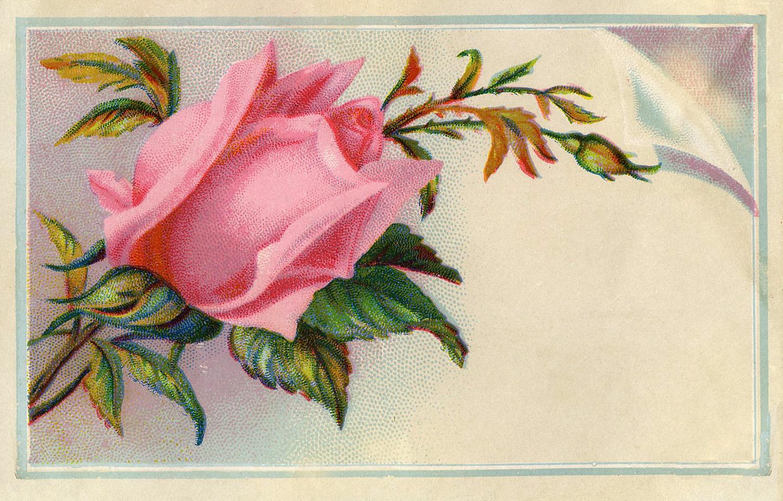 Victorian Graphic.