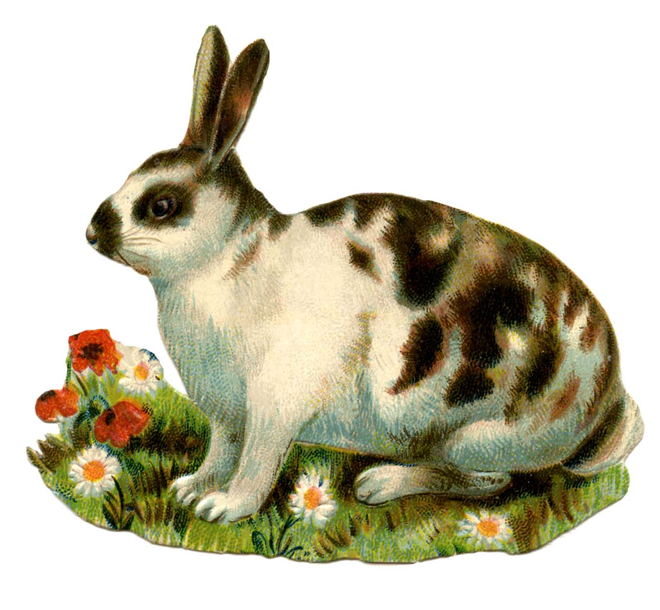 Animal clipart bunny.