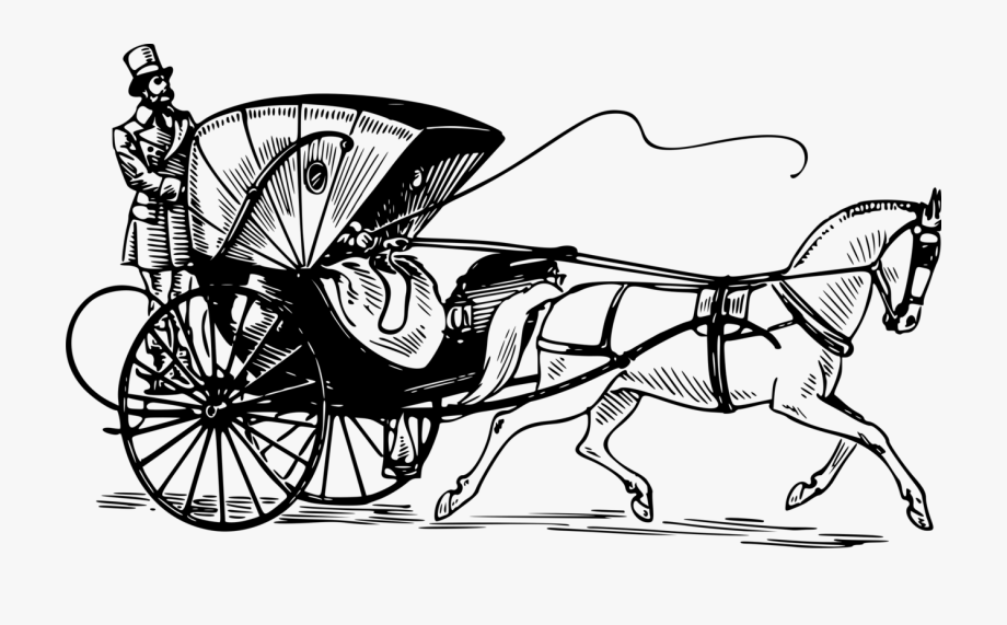 Horse And Buggy Carriage Horse.