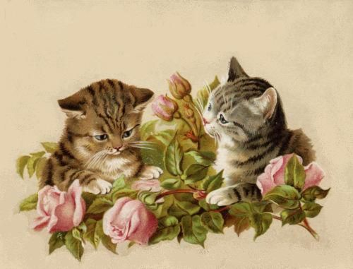 bumble button: Very cute Victorian cat and kitten pictures.
