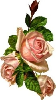 Victorian Rose Clipart.