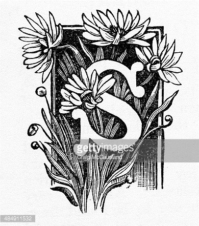 """Woodcut of a Capital """"S"""" with Daisies Victorian Engraving."""