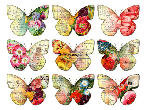 Victorian butterfly clipart.