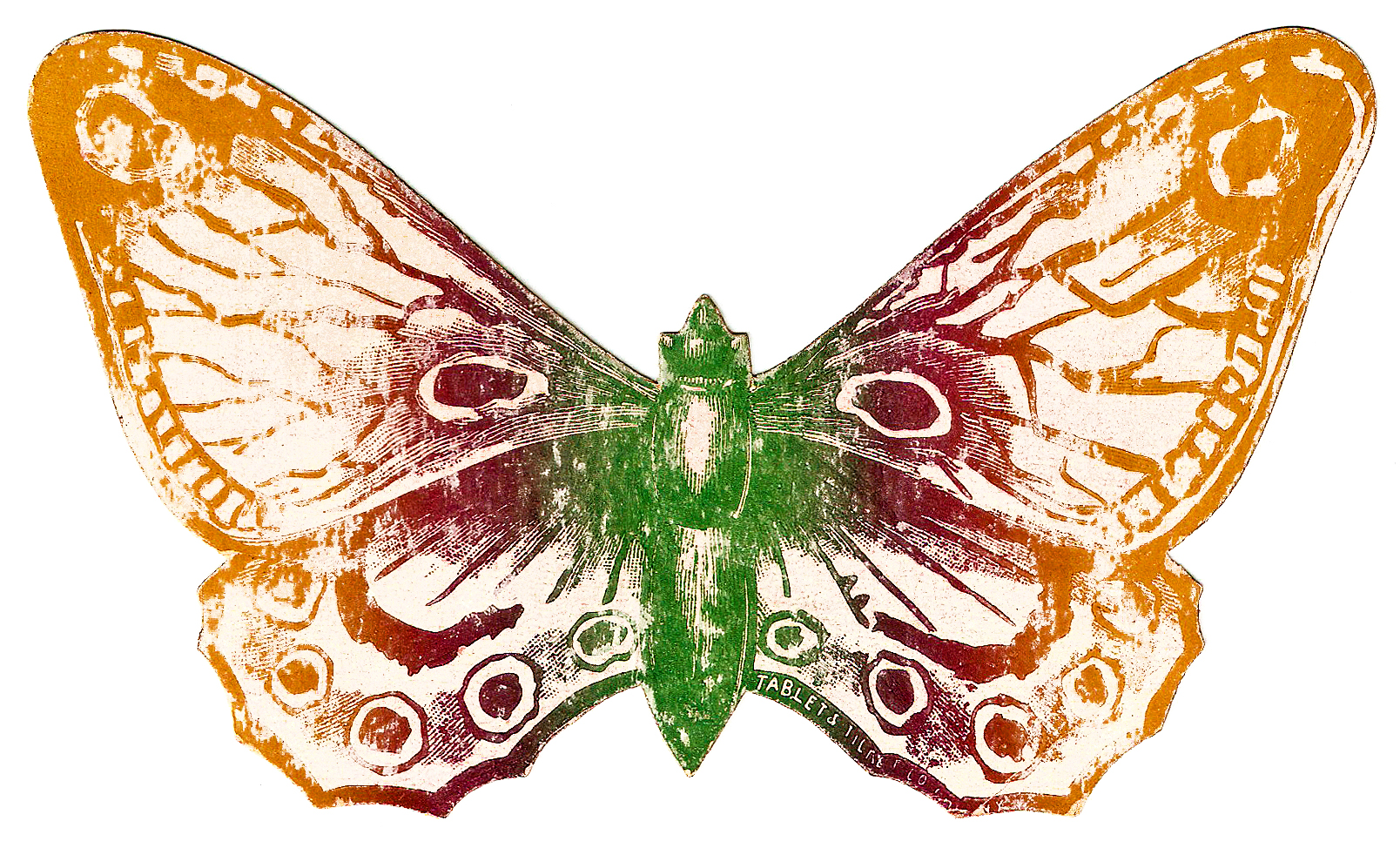 Victorina butterfly clipart #13
