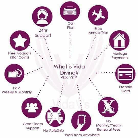 Sign Up With Vida Divina.