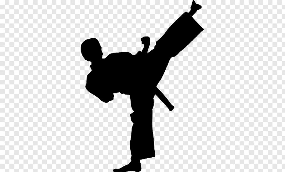Wall decal Kick Martial arts Karate Taekwondo, karate free.