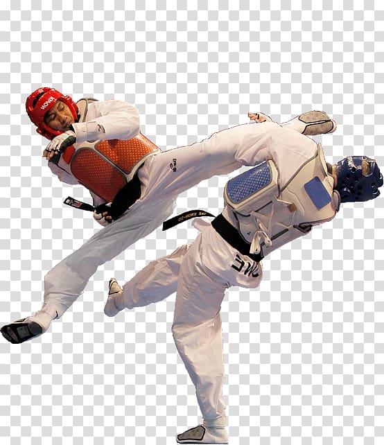Two taekwando players, World Taekwondo Combat sport Martial.