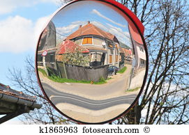 Distorted tree Stock Photo Images. 543 distorted tree royalty free.