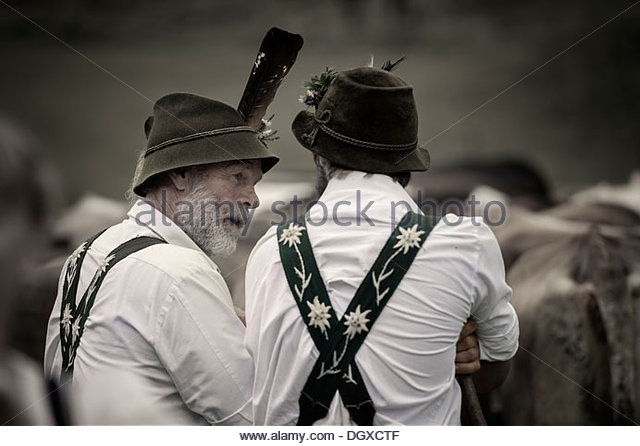 Cattle Herder Stock Photos & Cattle Herder Stock Images.