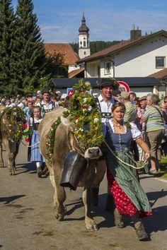 Viehscheid Glocken.