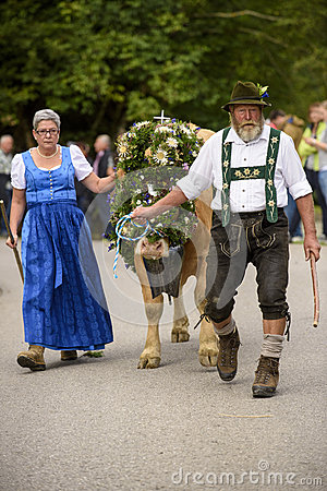 Almabtrieb And Viehscheid In Bavaria Editorial Stock Photo.