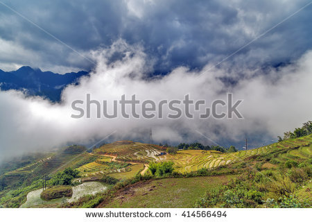 Cultivated Rice Fields On Terraced Mountain Stock Photo 351123281.