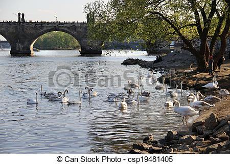 Stock Photography of Charles bridge, Prague, Czech Republic.