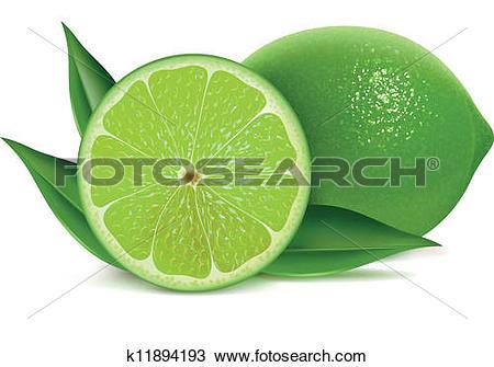 Clipart of Fresh limes k11894193.
