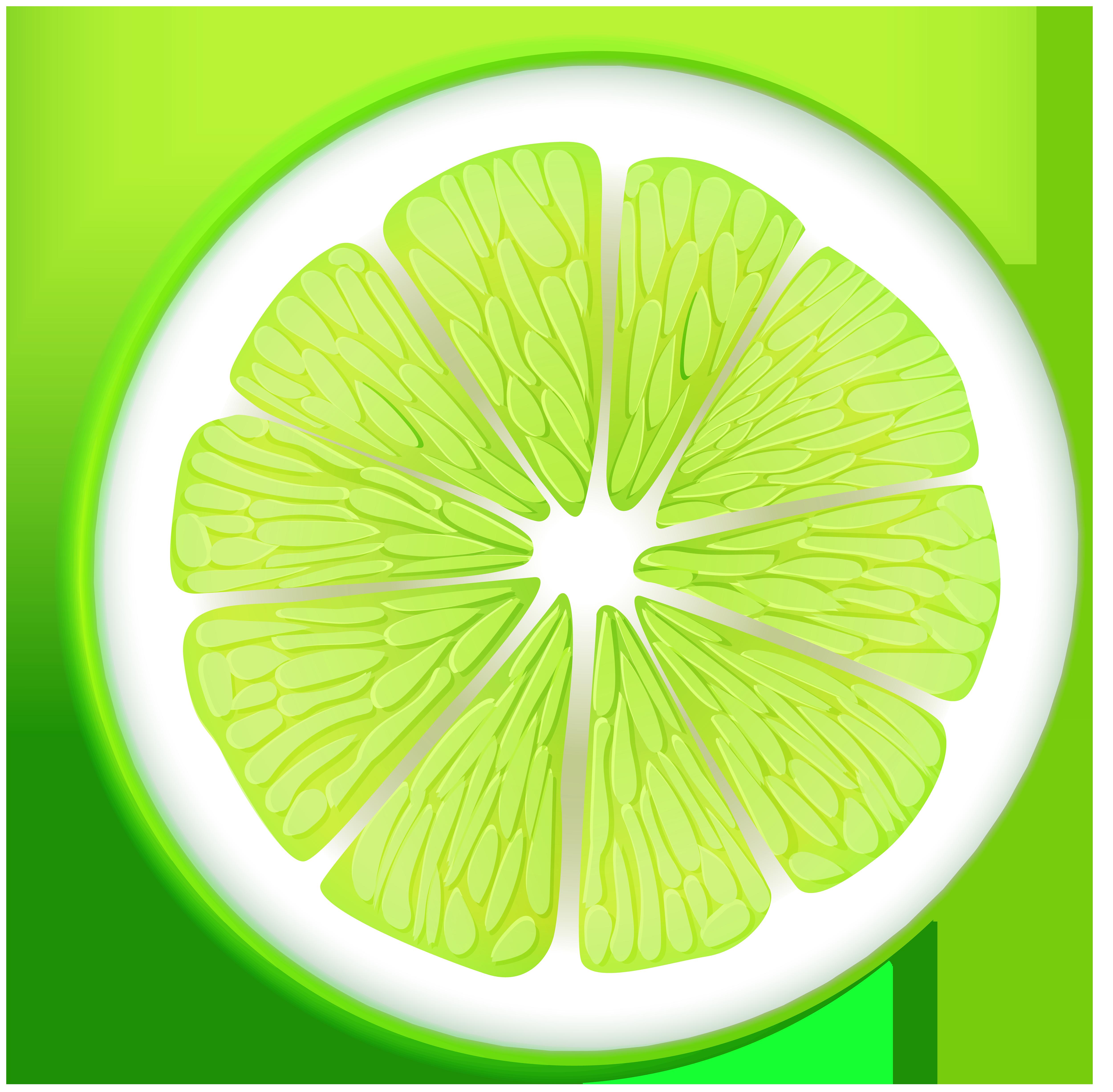 Lime Transparent PNG Clip Art.