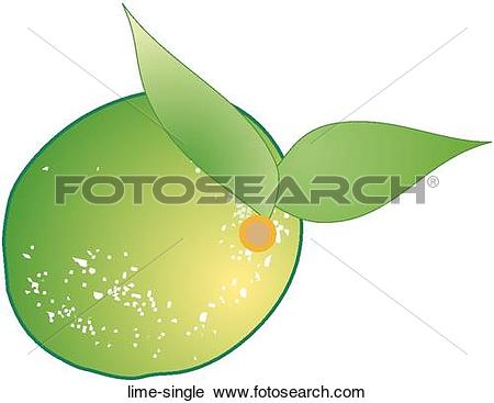 Clipart of Lime Single lime.