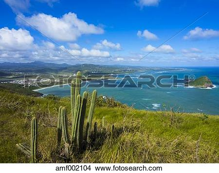 Stock Photo of Caribbean, Lesser Antilles, Saint Lucia, View over.