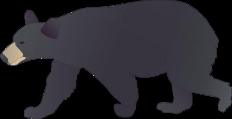 Ursus Americanus American Black Bear Most Viewed Vector Clipart.