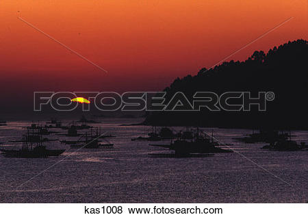 Pictures of Oyster bed platforms in Vigo Bay at sunset, west coast.
