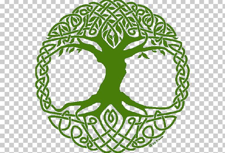 Tree Of Life Norse Mythology Yggdrasil Symbol Celtic Sacred.