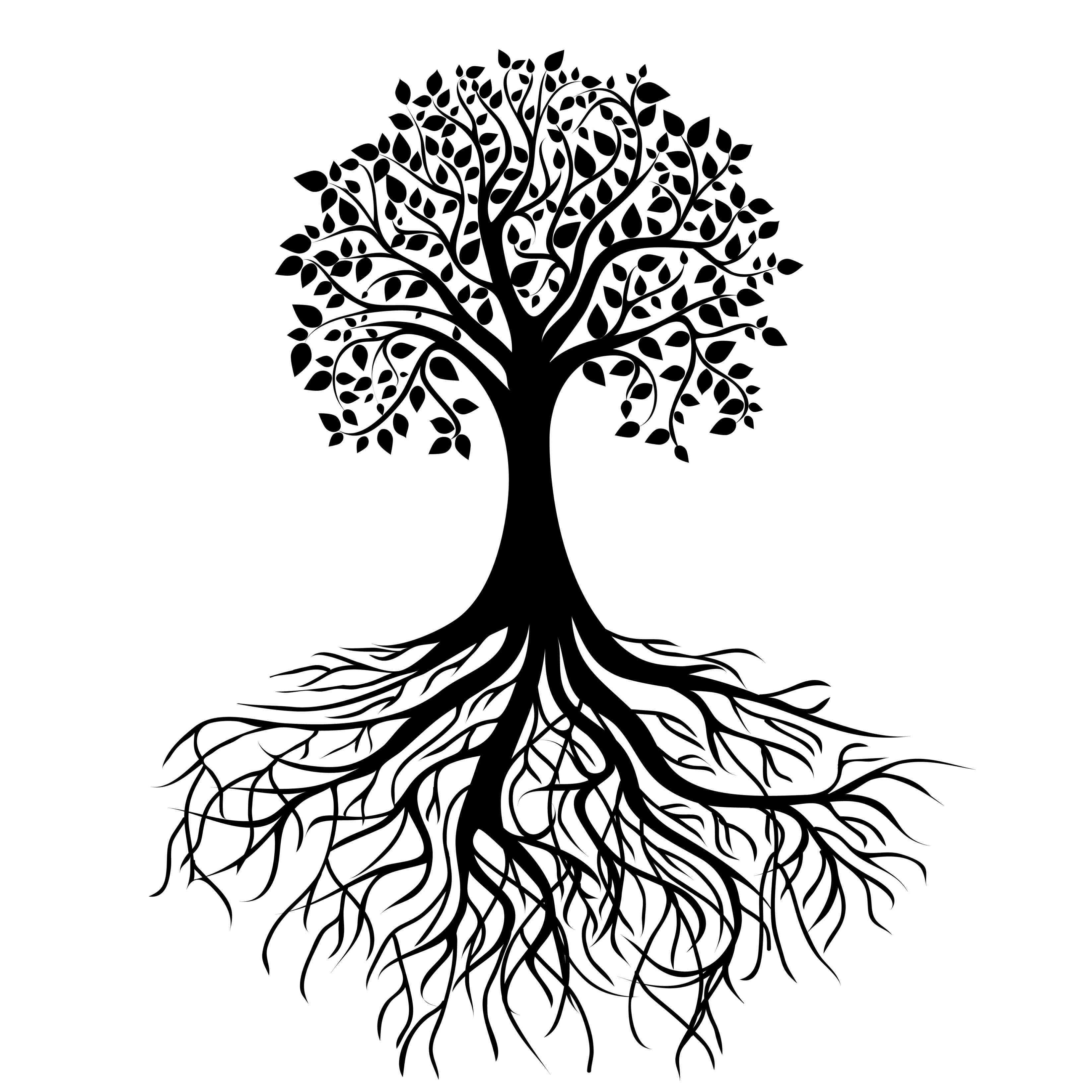 Tree And Roots Silhouette at GetDrawings.com.