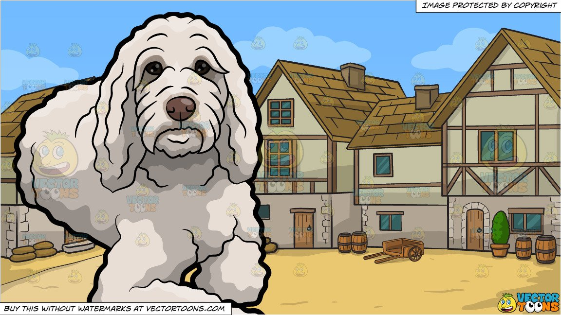 A Curly White Dog and An Old Style Medieval Village Background.