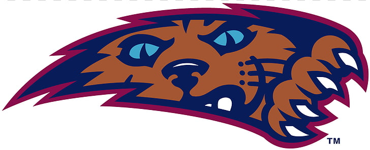 Arizona Wildcats mens basketball Villanova Wildcats mens.