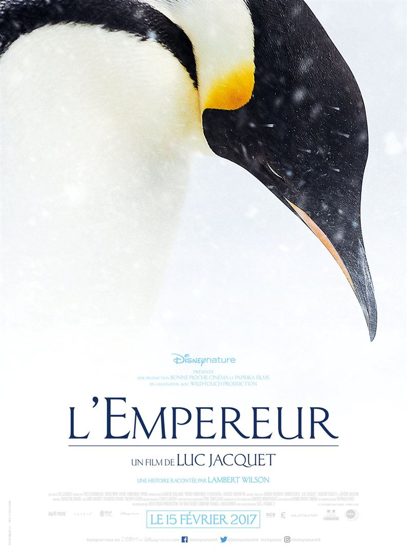 Bienvenue au cinéma de Villedieu les Poeles (50).