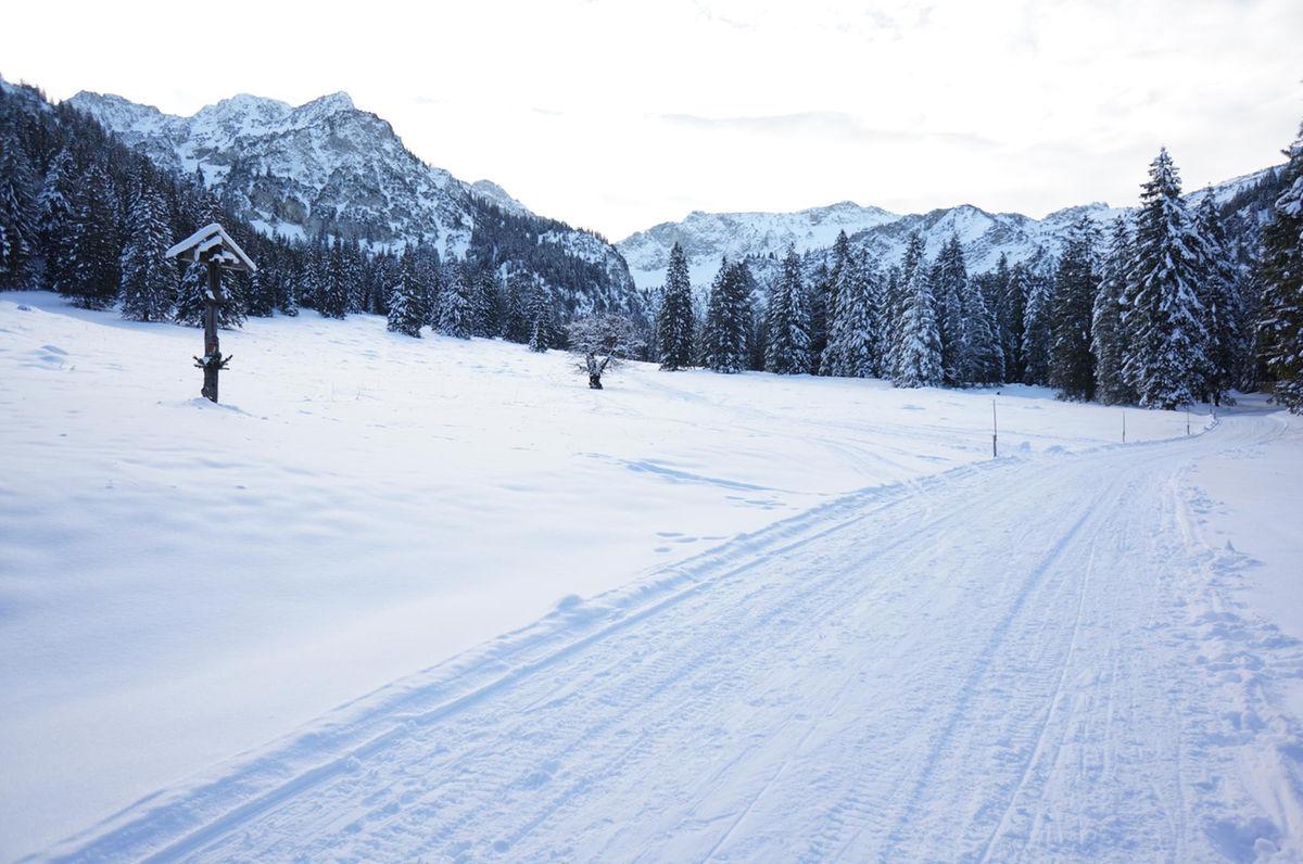Winterwandern: Vilser Alm.