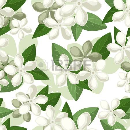 55 Vinca Stock Vector Illustration And Royalty Free Vinca Clipart.