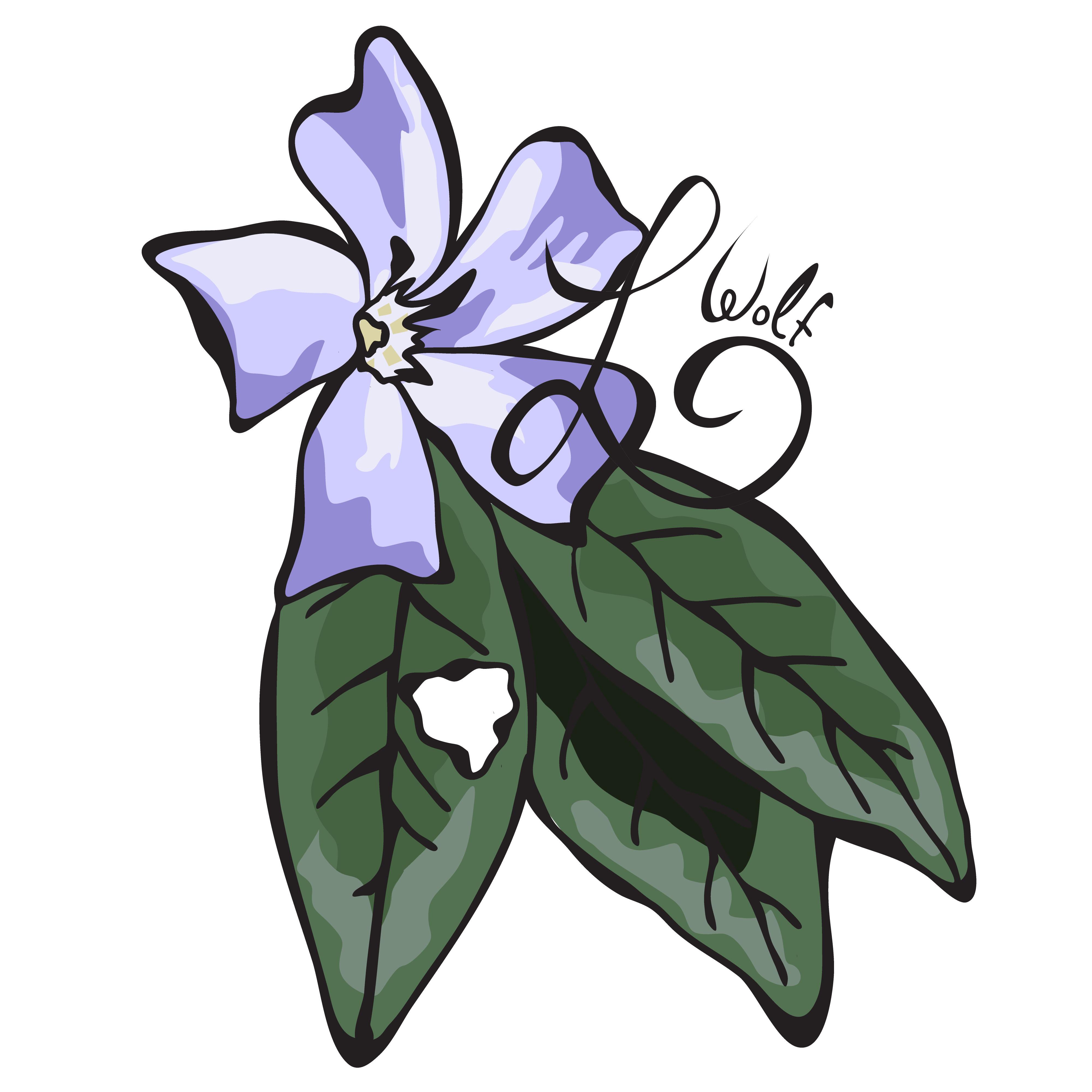 Vinca major flower by Lunas.
